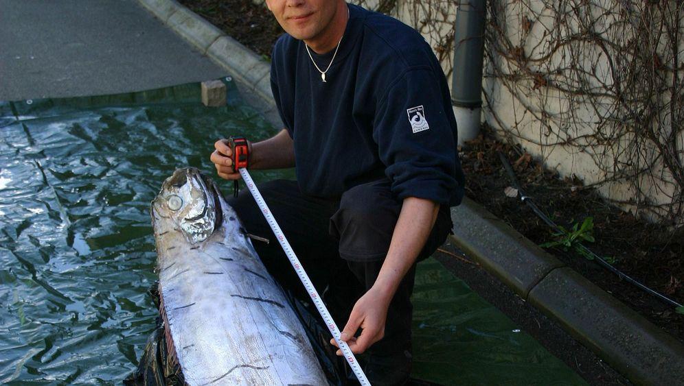 Photo Gallery: One Big Fish