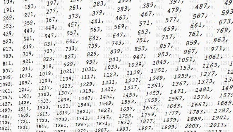"""Primzahl-Tabelle: """"Das ist eine ganz chaotische Situation"""""""