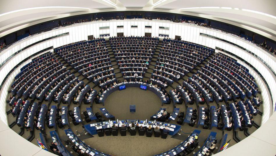 Plenum in Straßburg