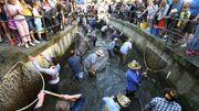 Frauen dürfen künftig am Fischertag Forellen fangen