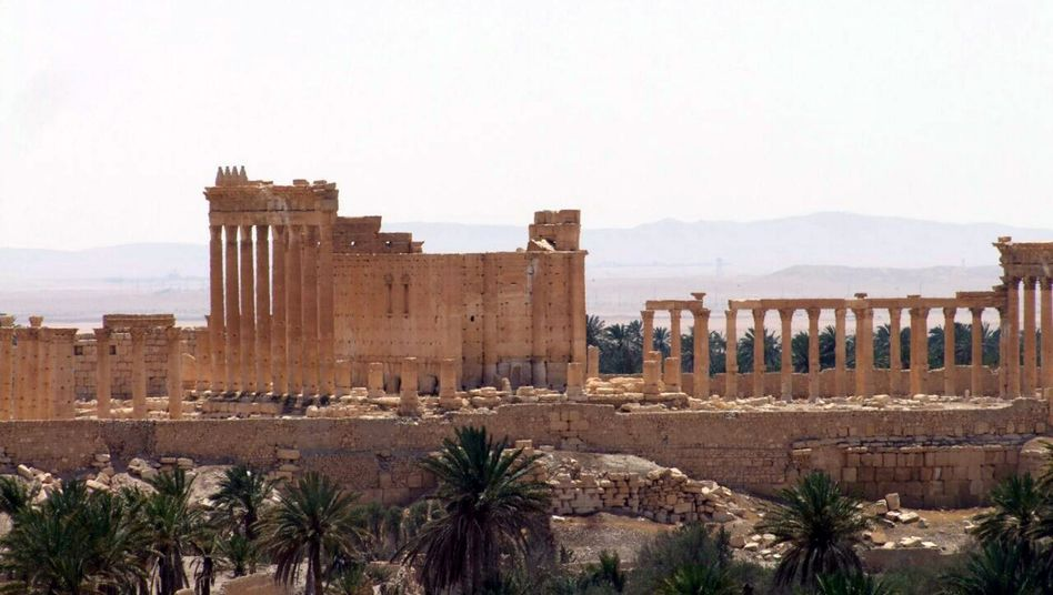 Ruinen von Palmyra: Touristen kommen wegen des Krieges schon seit Jahren nicht mehr her