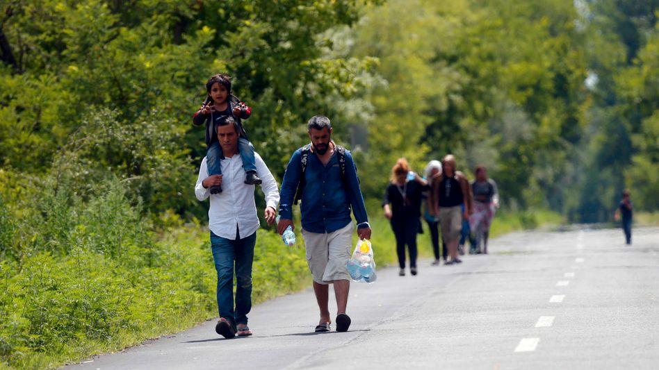 Flüchtlinge aus Syrien: Viele kommen über Serbien und wollen nach Deutschland