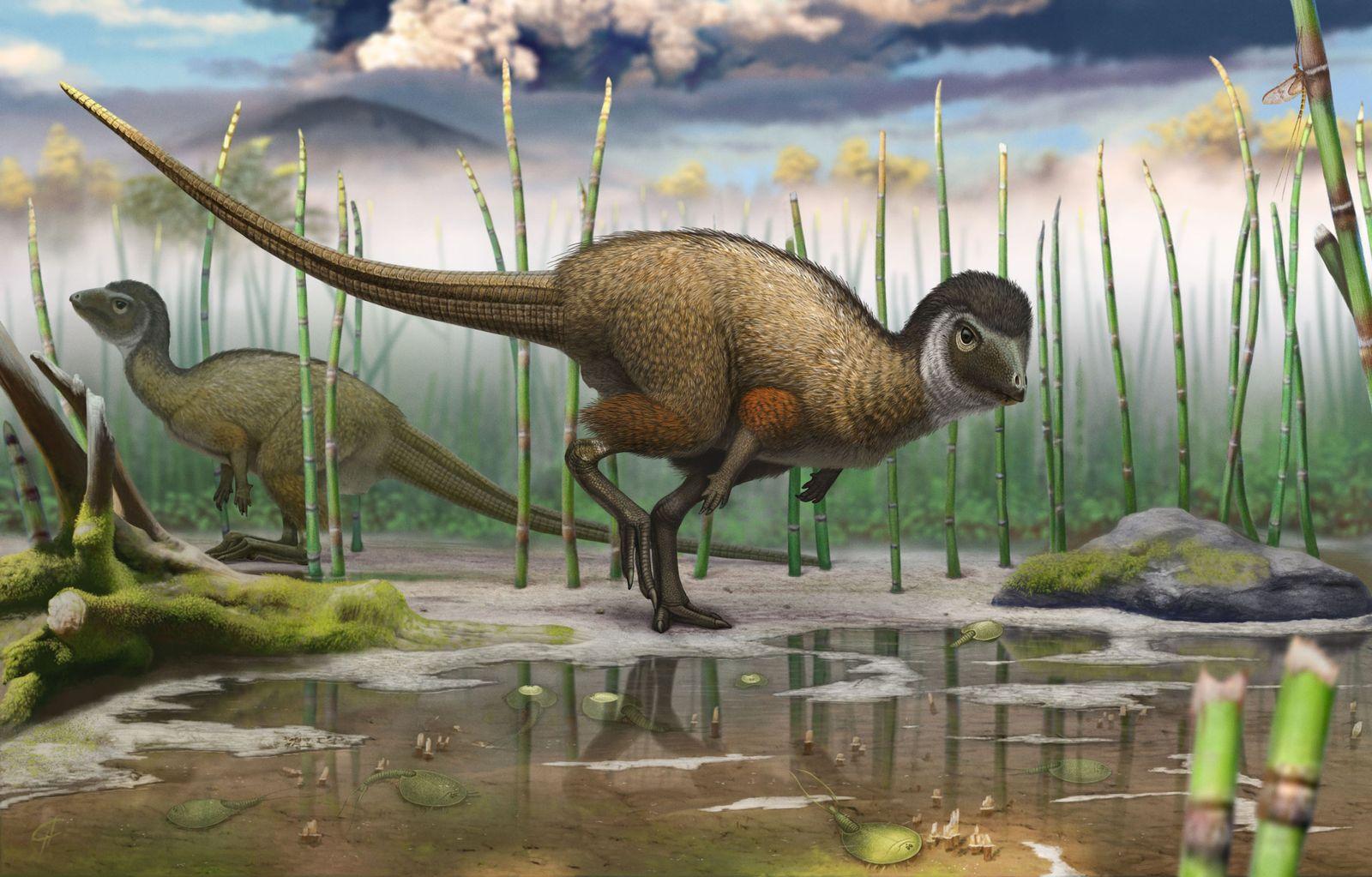 Dinosaurier mit Federn