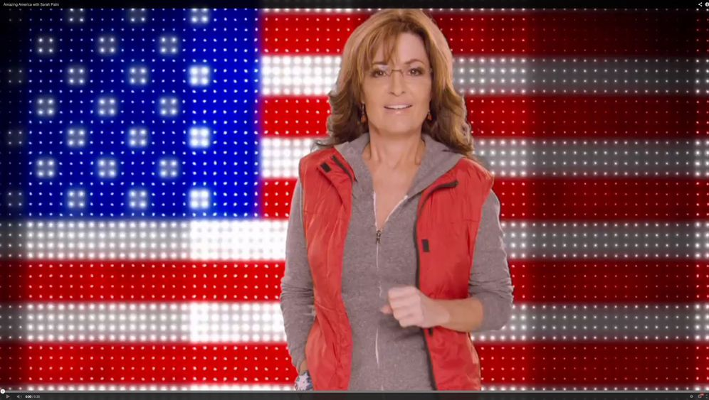 Tea-Party-Ikone Palin: Das Comeback der Aufpeitscherin