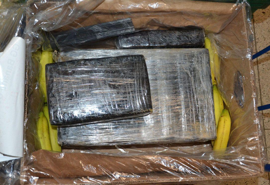 Hunderte Kilogramm Kokain unter Bananen gefunden