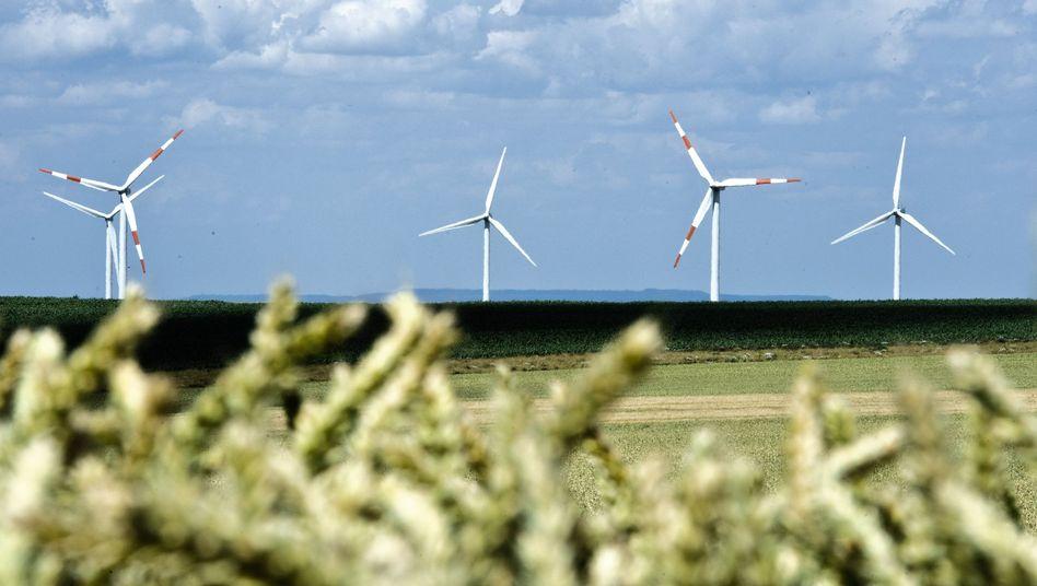 Weizenfeld, Windräder: Gewinnfaktoren im Klimawandel