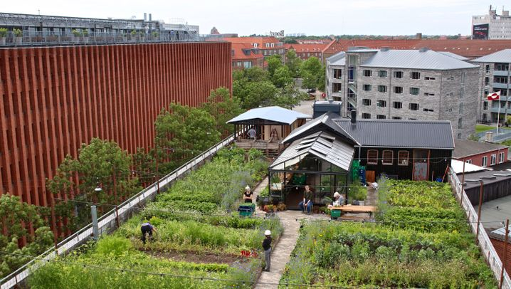 Kopenhagen: Speisen im Dachgarten, Cruisen im Solarboot