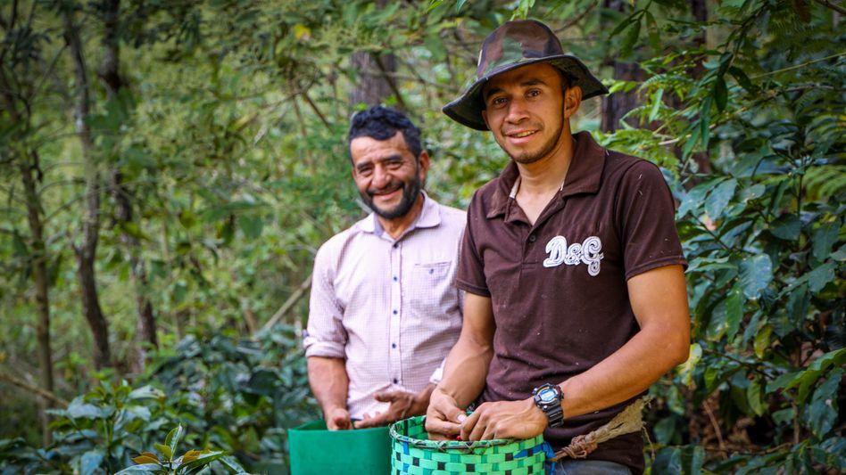 Kaffeebauer Israel Rodríguez (r.) hofft, dass er sich irgendwann ein eigenes Haus leisten kann