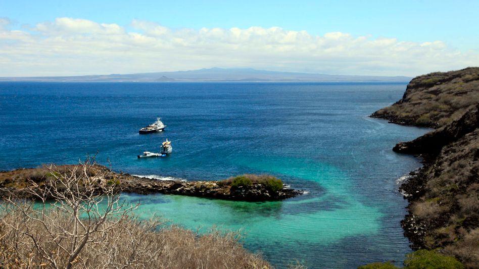 Paradies für Tiere: Die Galápagos-Inseln sind Weltnaturerbe (Symbolbild)