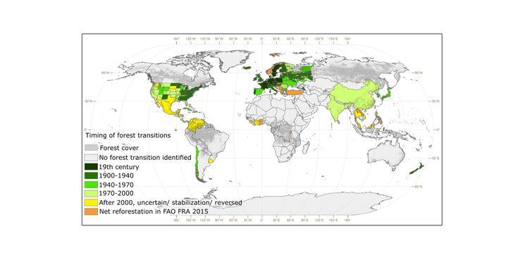 Entwicklung der Wälder weltweit