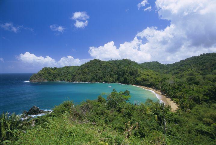 Bucht auf Tobago: Die Karibik sieht auch im März ziemlich karibisch aus