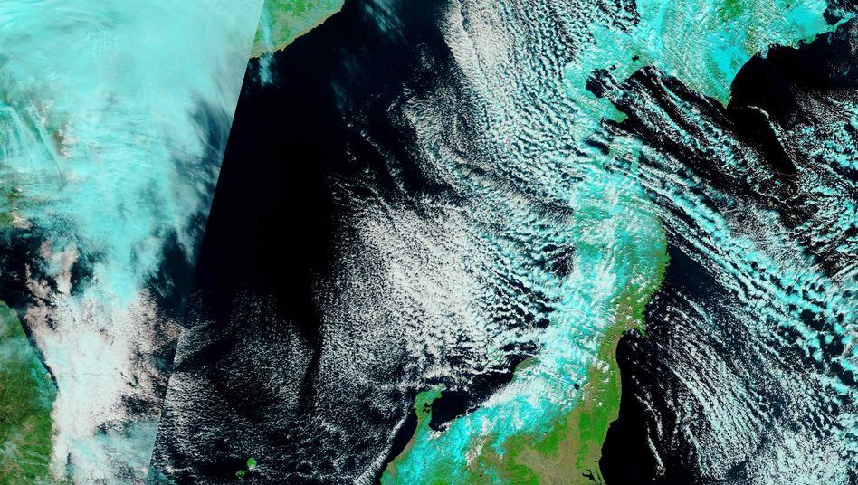 Japan: Erdbeben hat Hauptinsel um 2,40 Meter verschoben