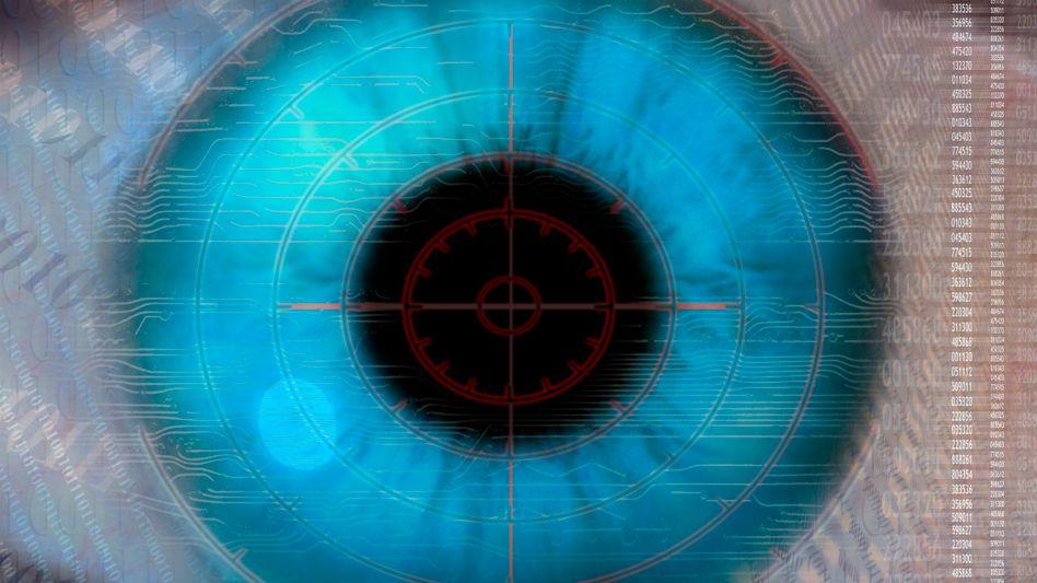 Auge im Zentrum der Forschung: Eher ein Computer als ein bloßer Sensor