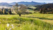 Die besten grünen Ausflugsziele in Deutschland