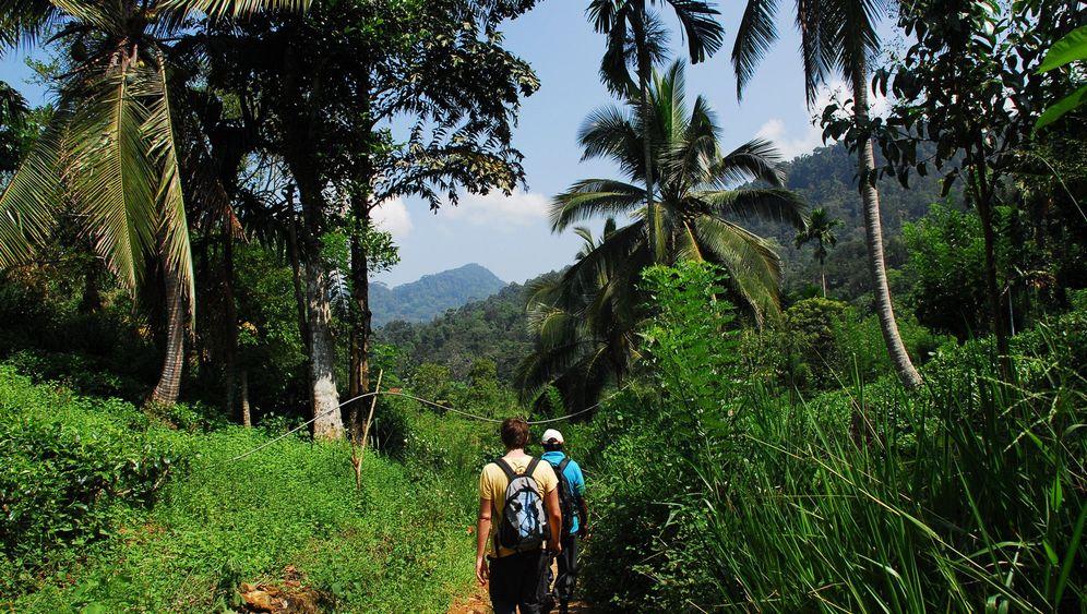 Sri Lanka: Abenteuer Regenwald