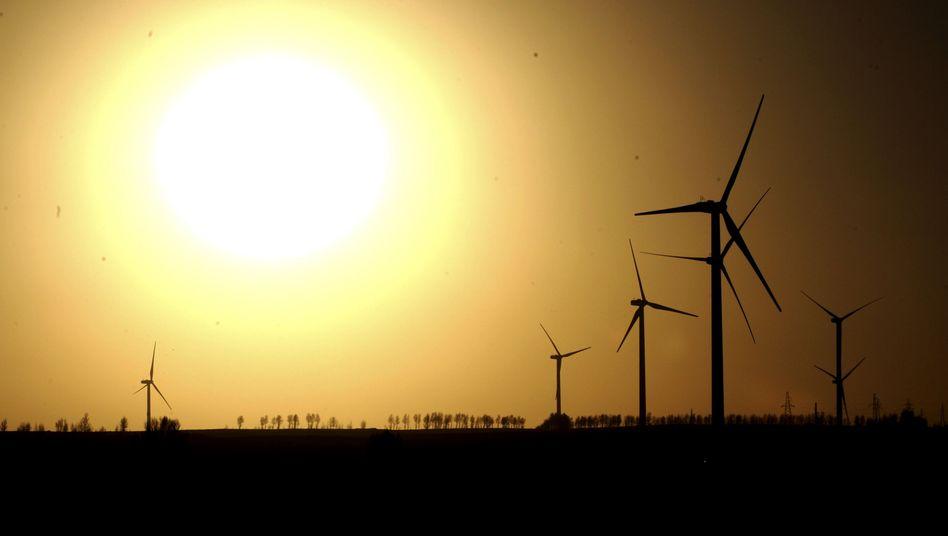 Windräder: Große Mehrheit für schnelleren Ausbau erneuerbarer Energien