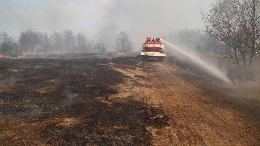 Brandenburg: Panzer sollen Waldbrände löschen