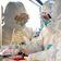 Zahl der Coronavirus-Fälle in Deutschland steigt auf 14
