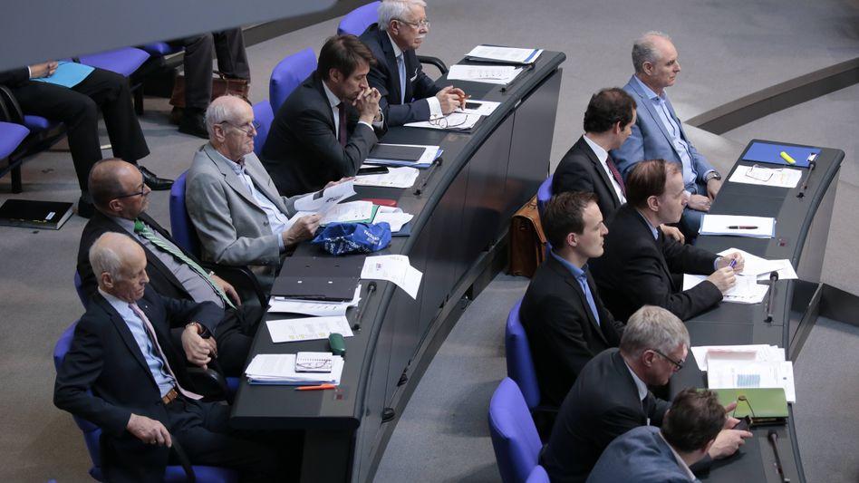 AfD-Fraktion im Bundestag (Achivbild)