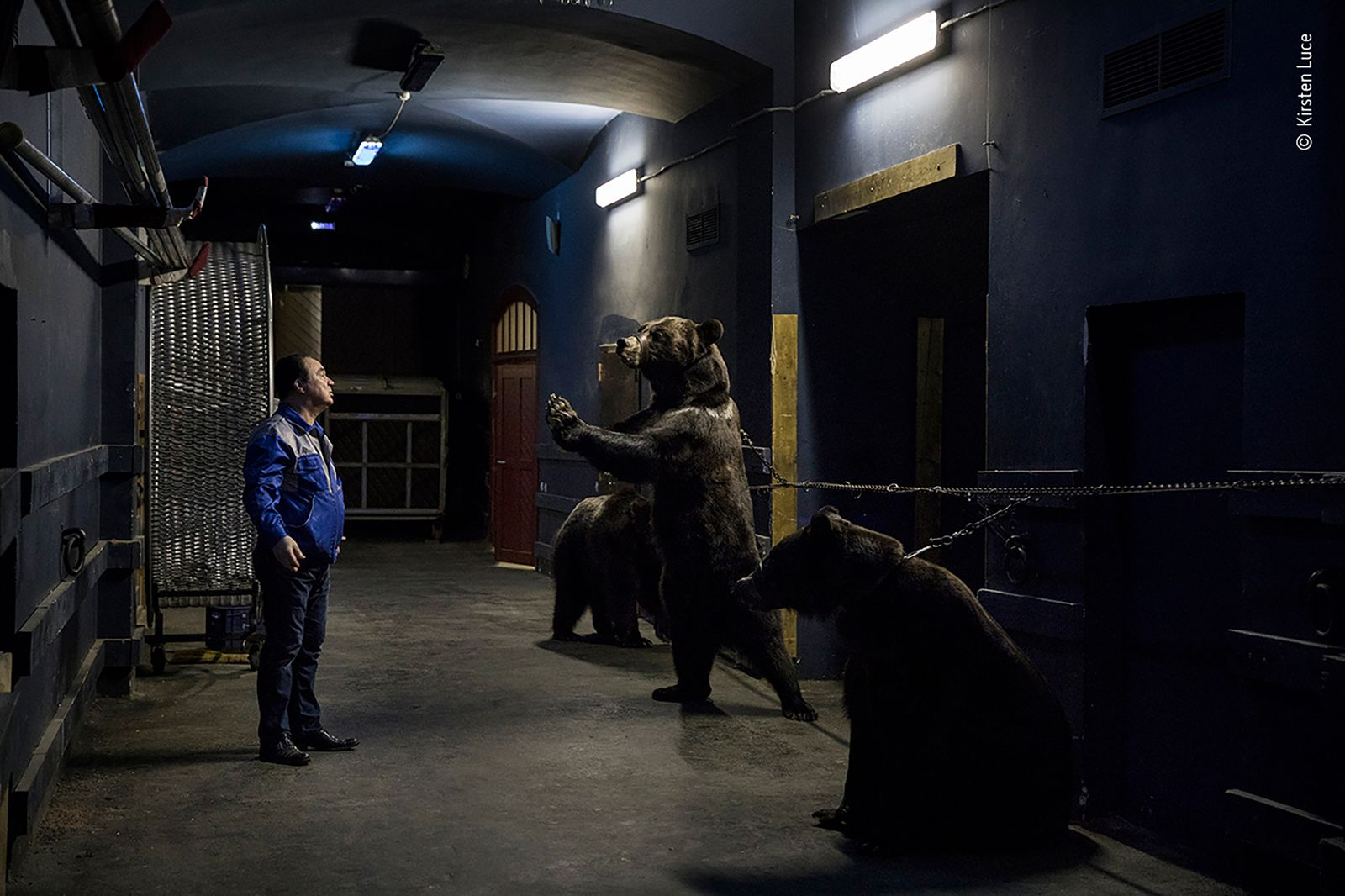 Backstage at the circus by Kirsten Luce, USA