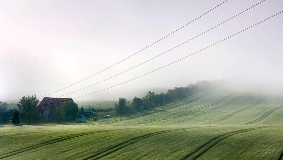 Landschaft in Sachsen-Anhalt