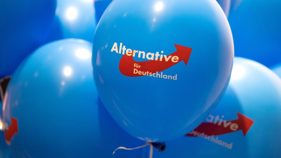 Germany's right-wing populist party Alternative for Germany has a strong online presence.