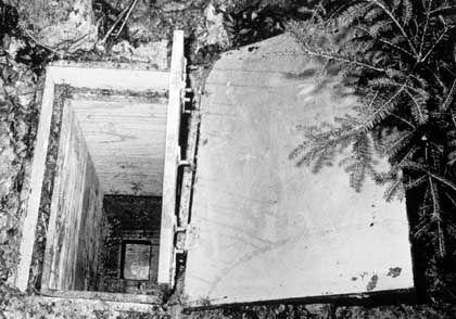 Holzkiste im Waldboden: Hier starb 1981 die kleine Ursula