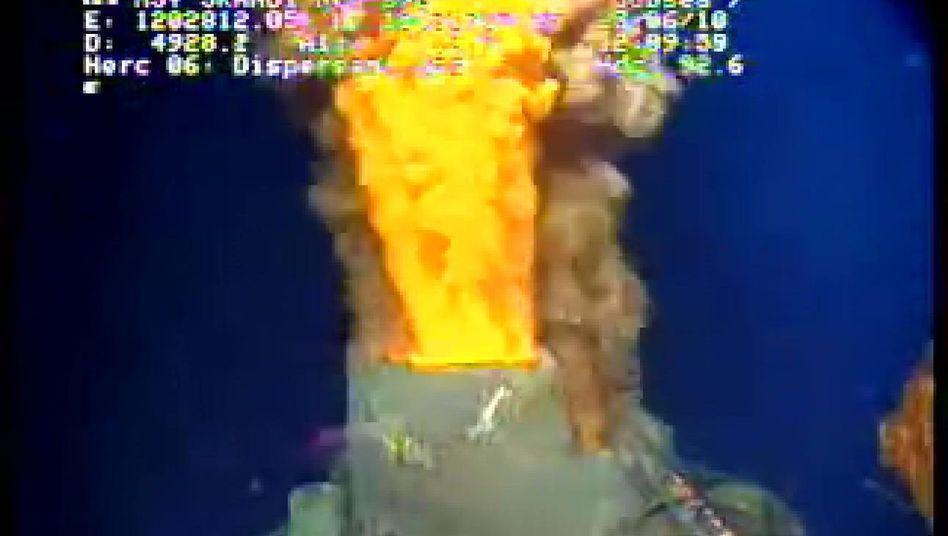 Bohrloch im Golf von Mexiko: Kappe fängt austretendes Gas und Rohöl auf