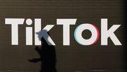 TikTok und die AfD