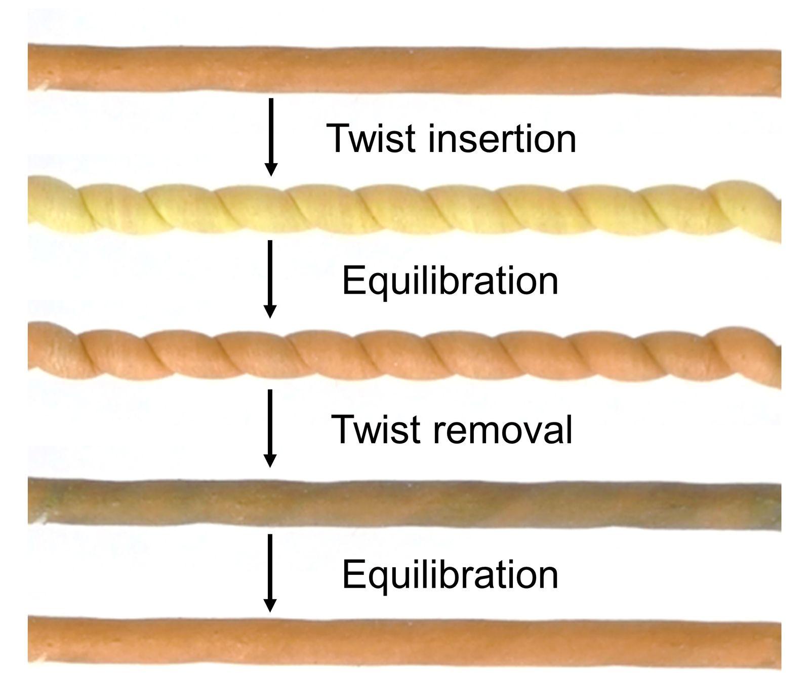 EINMALIGE VERWENDUNG Naturkautschukfaser/ Faser