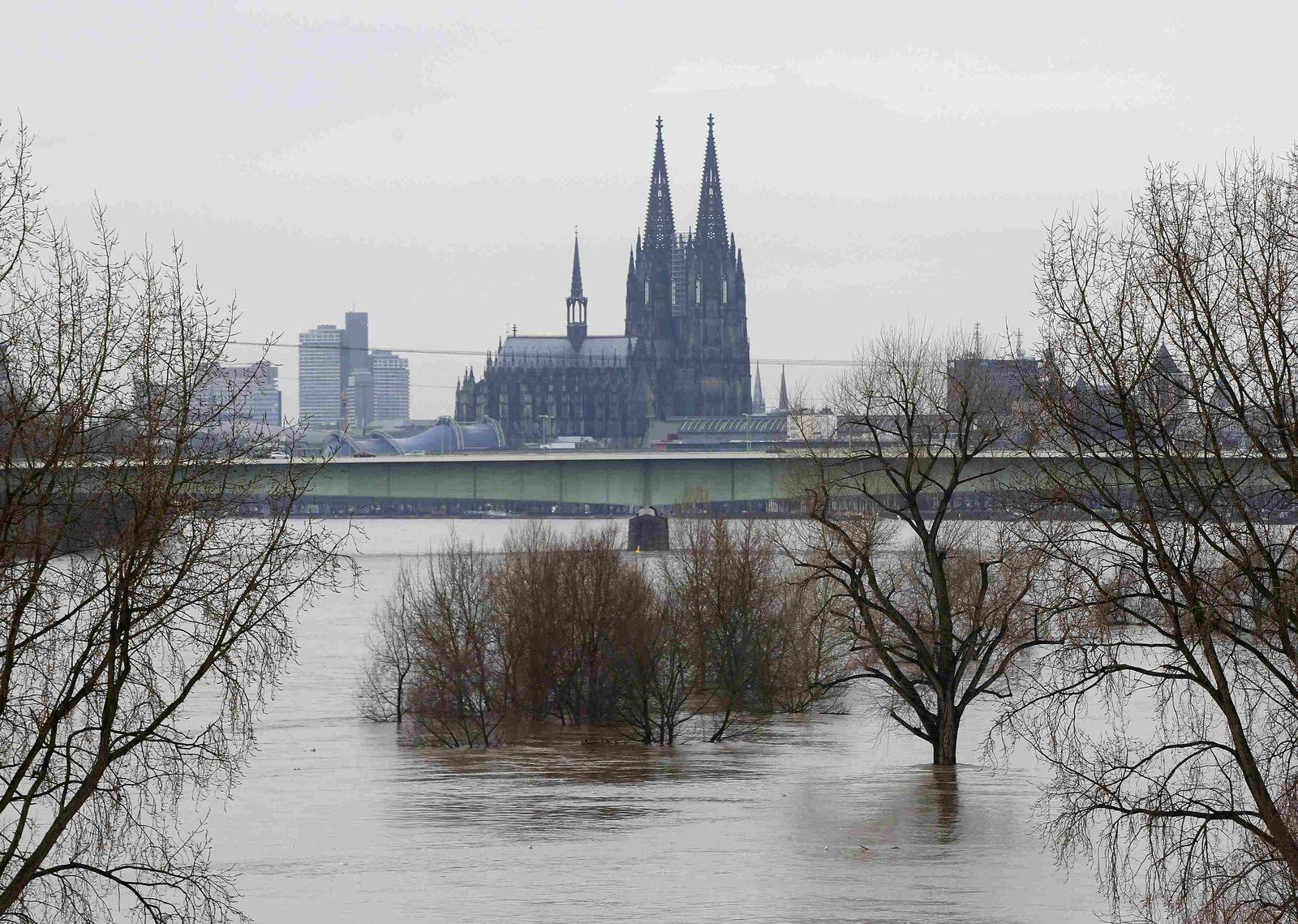Dom / Köln