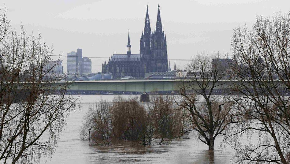 Kölner Dom: Erkenntnisse aus den Rückmeldungen der Gläubigen