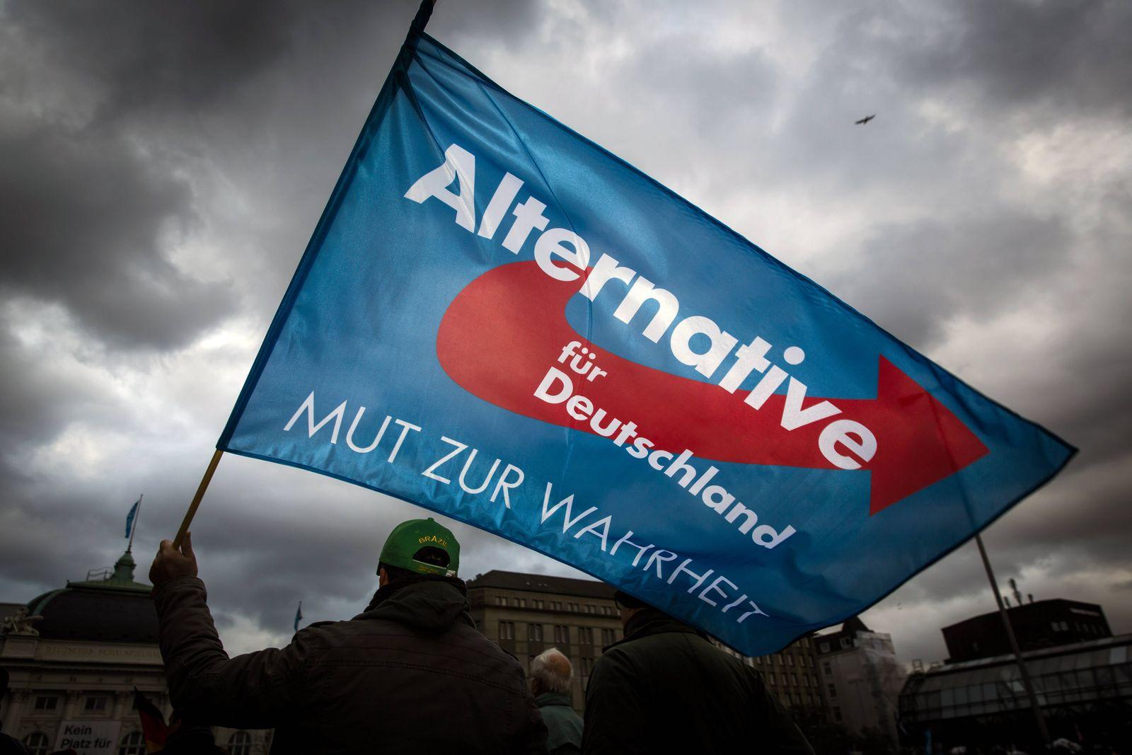 EINMALIGE VERWENDUNG AfD/ Bundestagswahl 2017