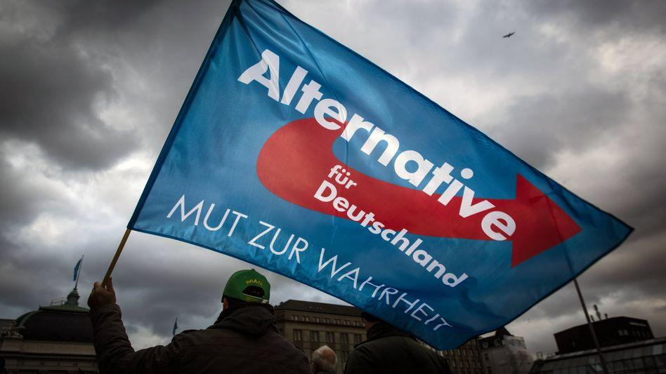 AfD-Anhänger in Hamburg (Archiv)