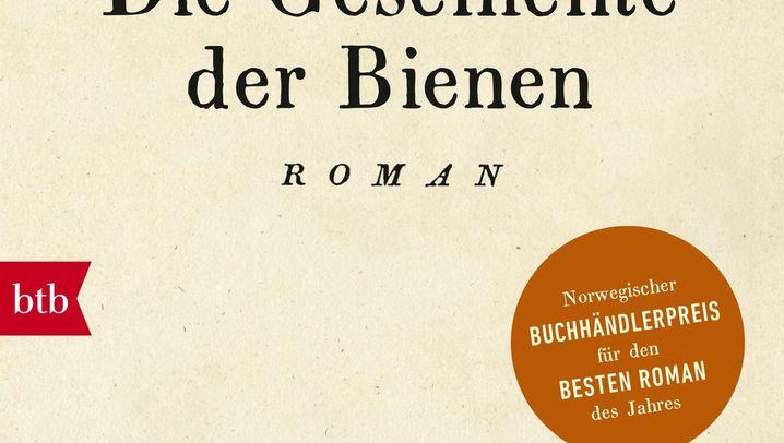 Bestseller 2017: Die meistverkauften Romane des Jahres