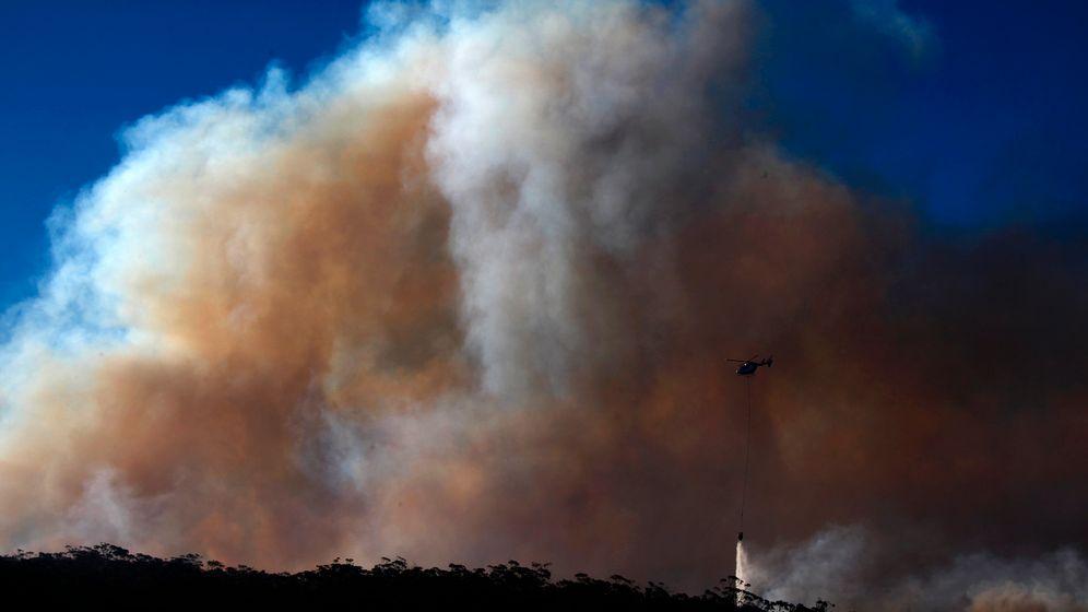 Waldbrände in Australien: Alarm in den Blue Mountains