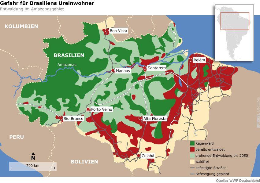 Grafik - Karte - Brasilien - Entwaldung im Amazonasgebiet
