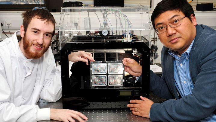 Forschung: Organe aus dem Drucker