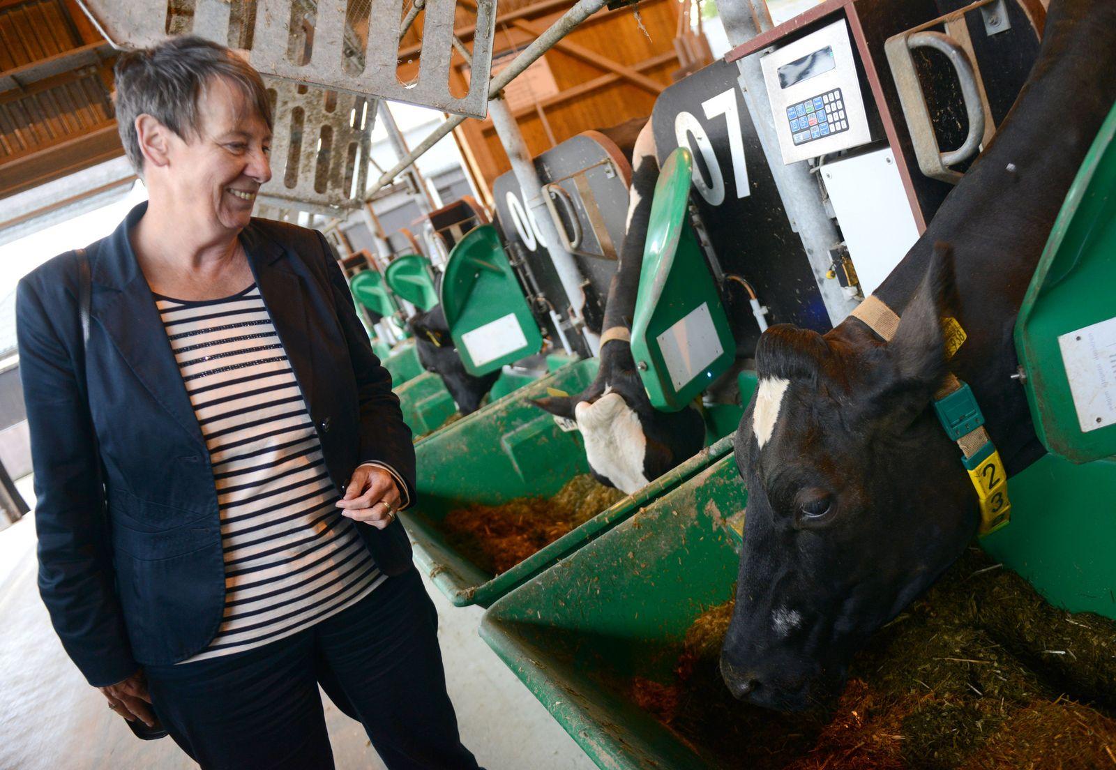 Hendricks Kühe Emissionen
