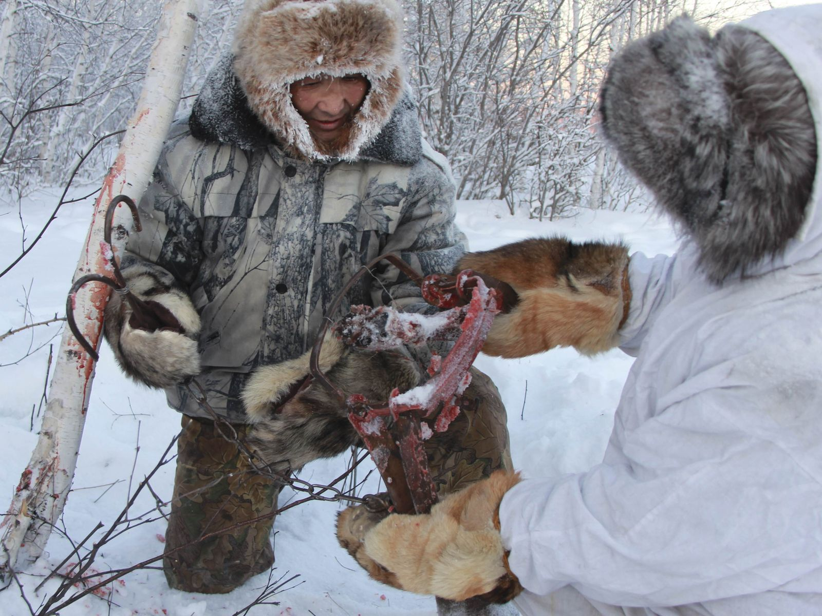 Wolfsjagd / Russland