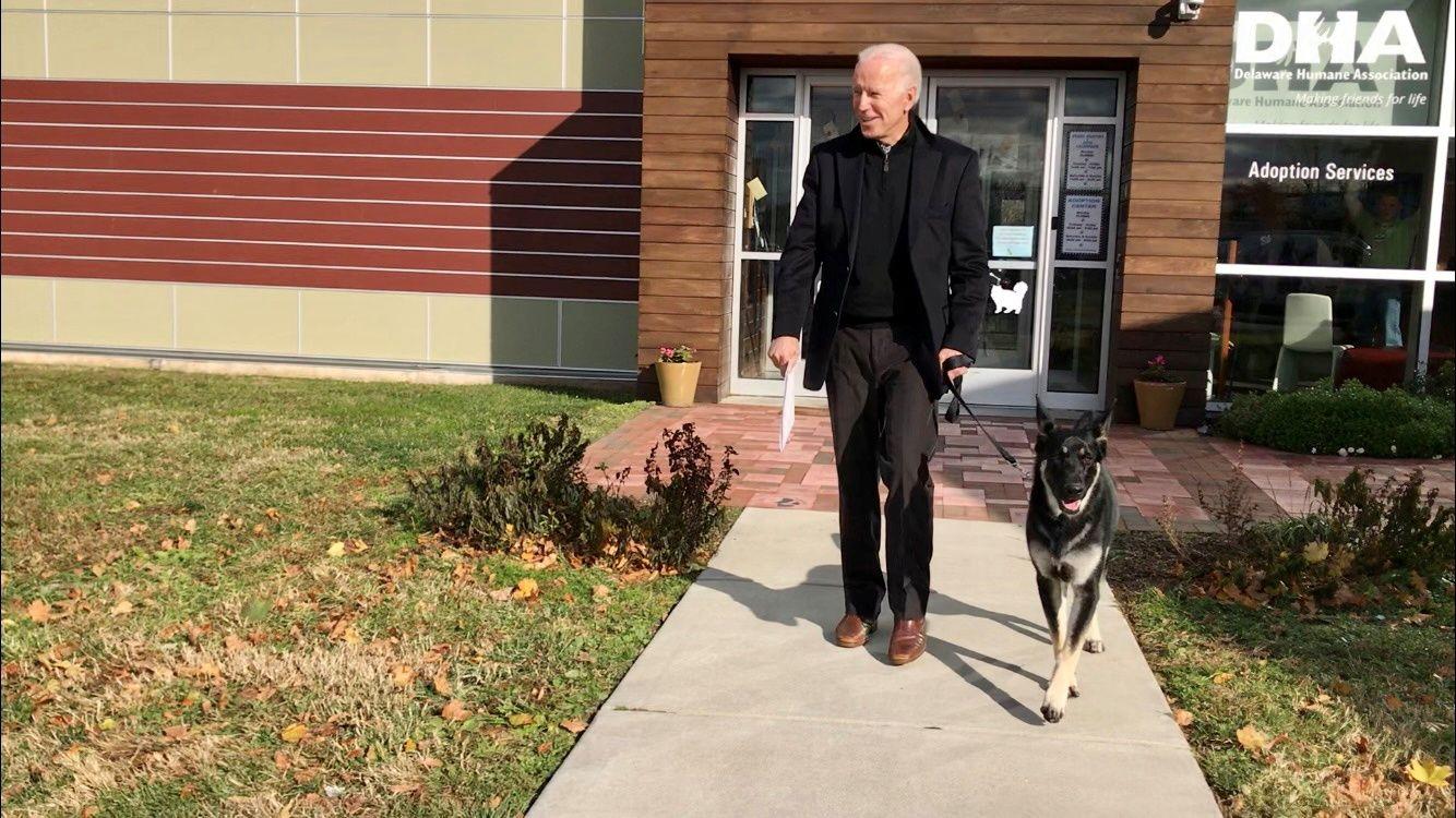Joe Biden guides his new rescue dog Major in Wilmington