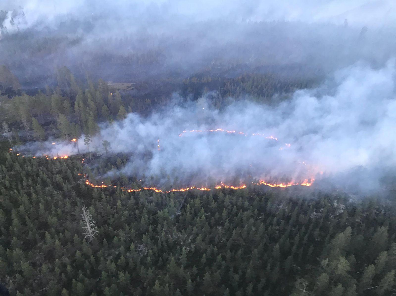 Schweden/ Brände/ Deutsche Feuerwehr/ Dalarna