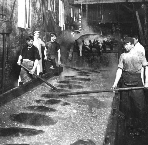 Arbeiter in den Kochereien