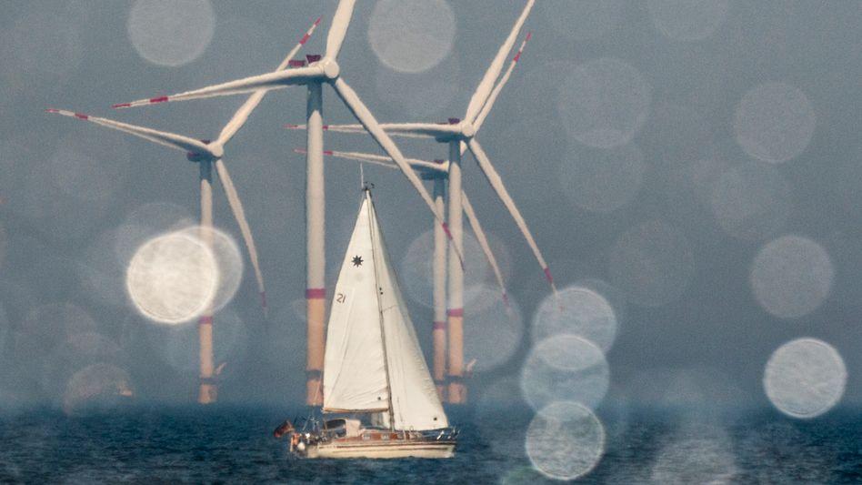 RWE-Offshore Windpark Arkona: »Bei den Kapazitätsplanungen bis 2025 sieht es mau aus«
