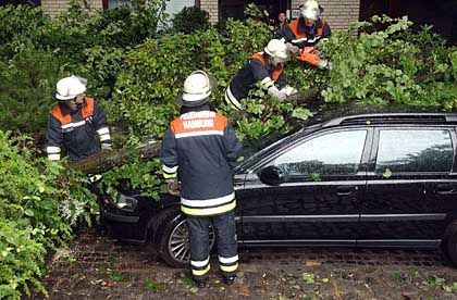 Feuerwehrleute bei Aufräumarbeiten: Mehr als 300 Einsätze in dreieinhalb Stunden