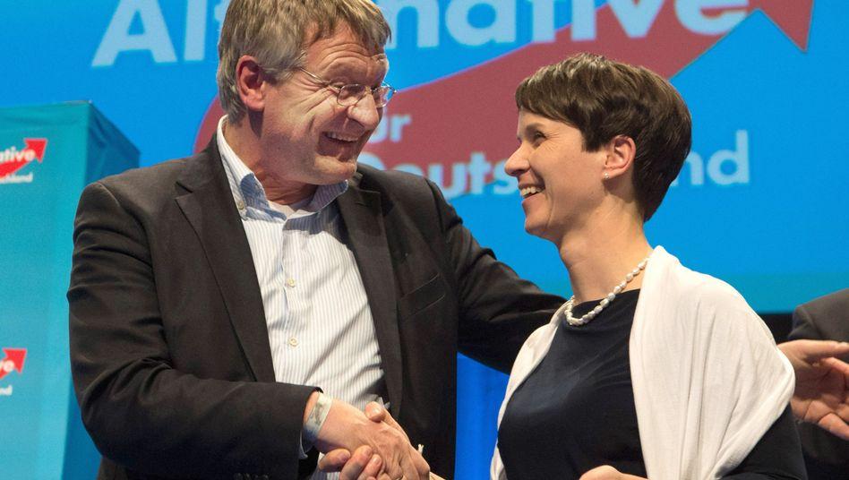 AfD-Chefs Jörg Meuthen und Frauke Petry