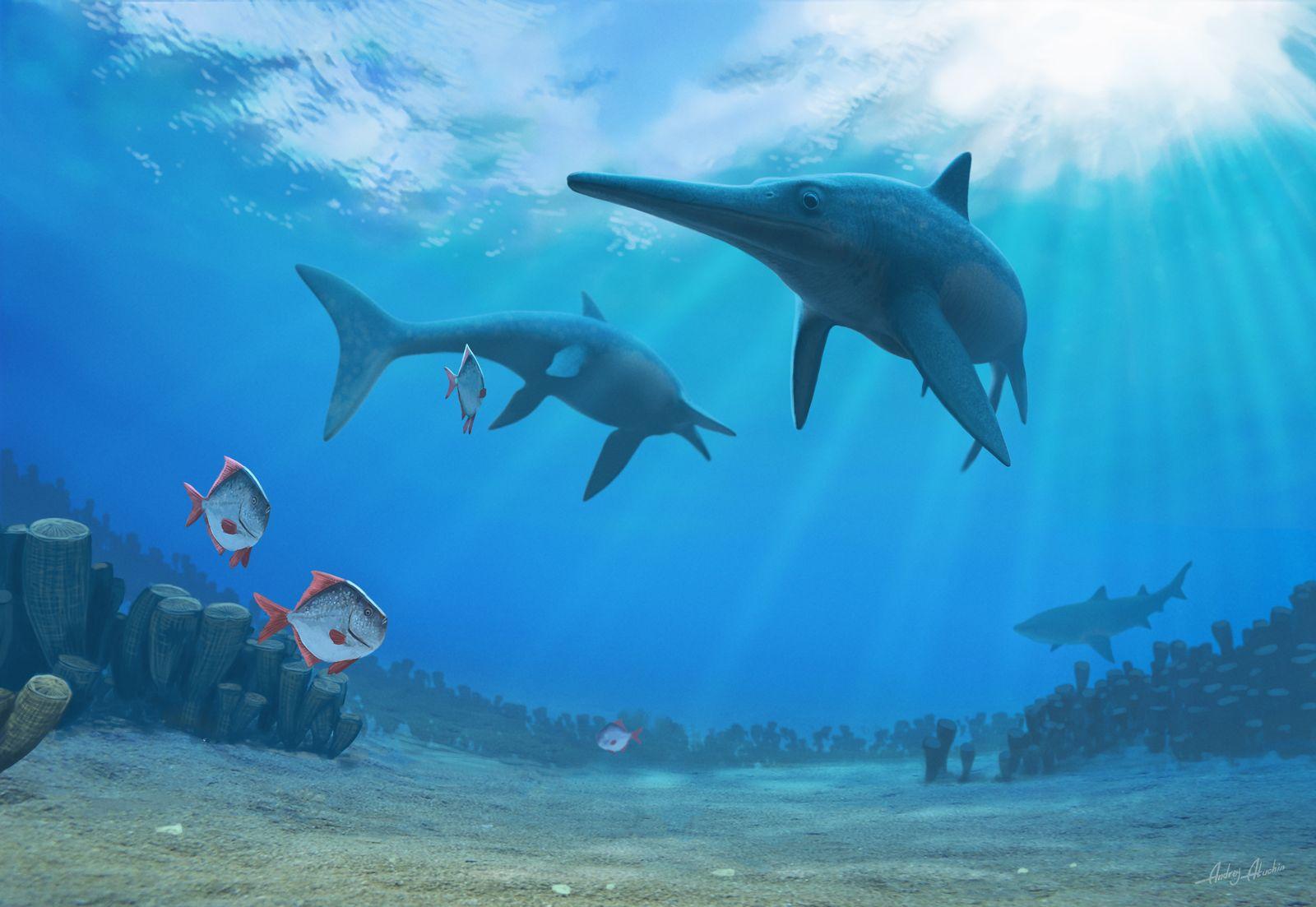 EINMALIGE VERWENDUNG Ichthyosaurier