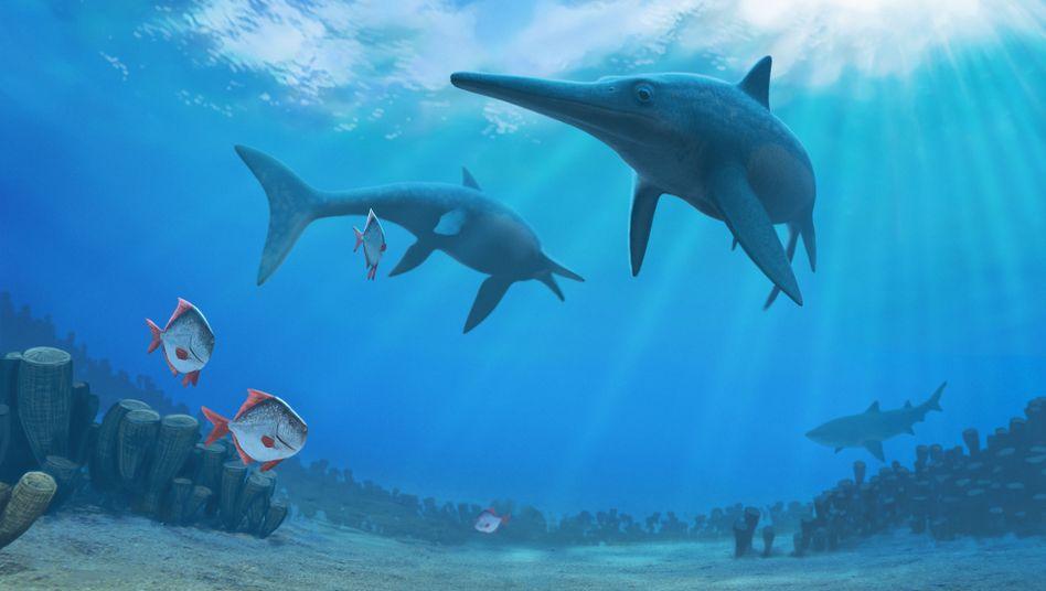 Pervushovisaurus bannovkensis war wohl der letzte aller Ichthyosaurier