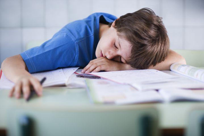 Unterricht? Aufpassen? Lieber schlafen!