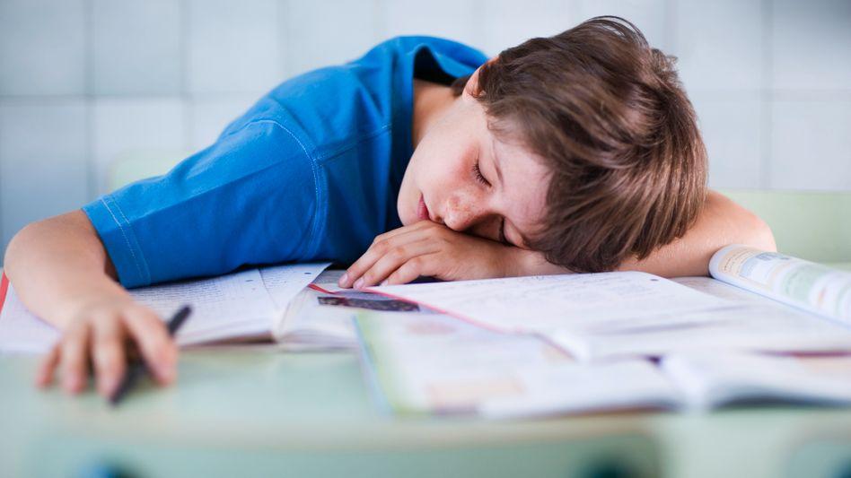 Eingeschlafener Junge: Narkoleptiker können sich gegen plötzlichen Schlaf nicht wehren
